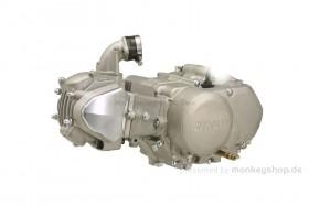 Daytona 125 cc 2V Tuning Motor mit Stage 2 Nockenwelle 18 PS 4-Gang mit Licht