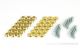 Takegawa Schraubensatz f. Felgen Alu gold eloxiert