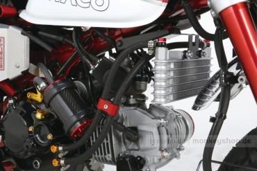 Kitaco Ölkühler Kit 3-reihig f. Monkey 125