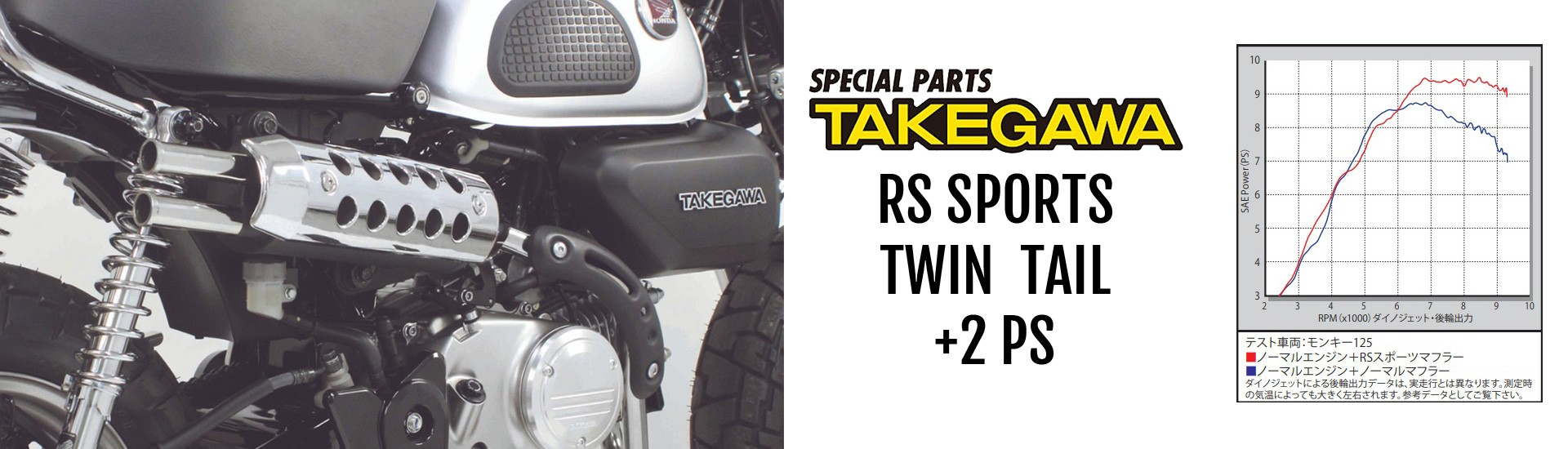 Takegawa RS Sports Twin Tail Auspuffanlage